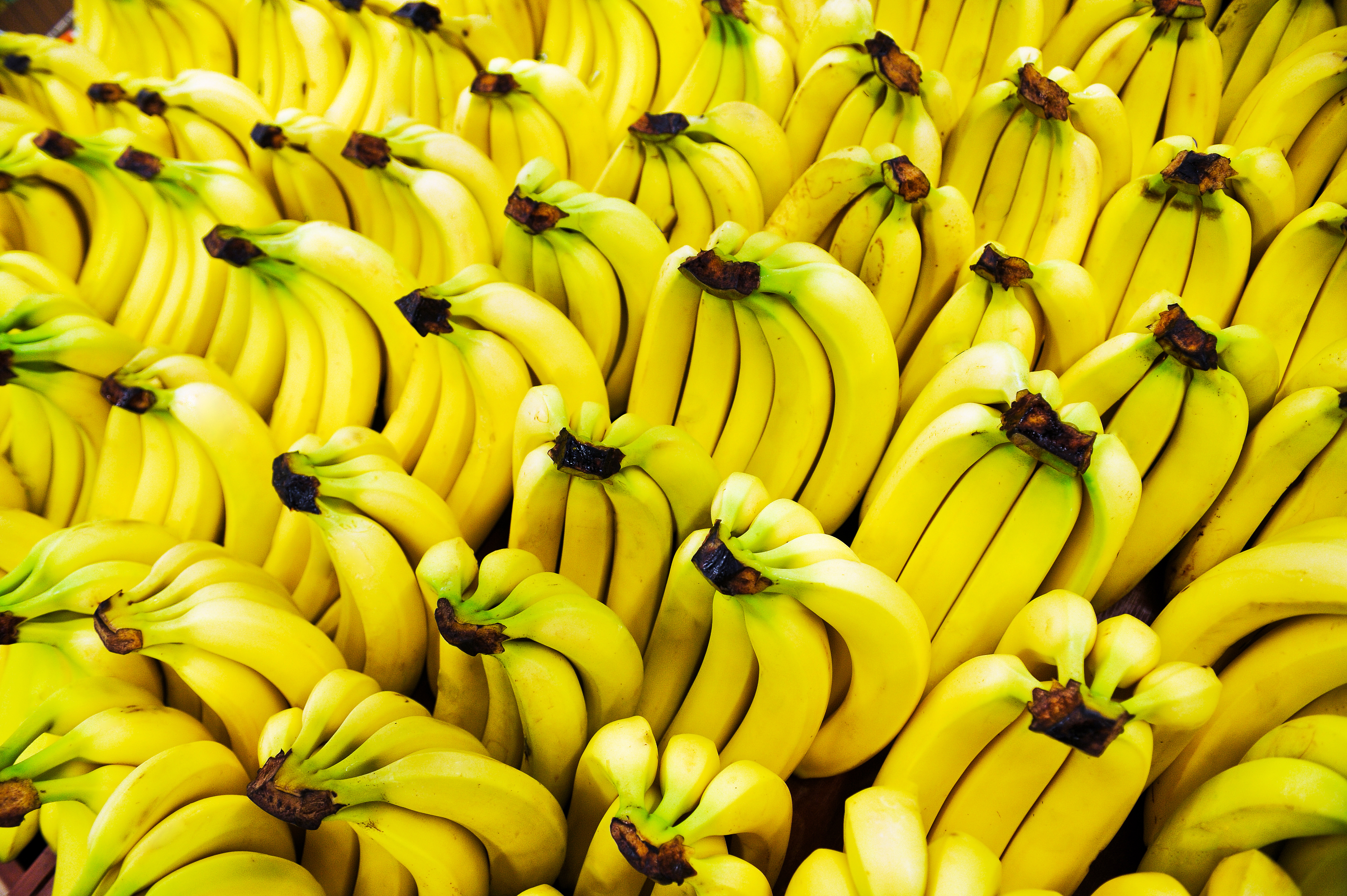10 Reasons To Include Banana In Your Daily Diet